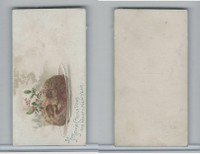 N227 Kinney, New Years Cards, 1890, A Merrie Christmas & Happy New Year (E)