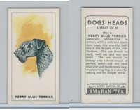 A0-0 Amaran Tea, Dogs Heads, 1965, #2 Kerry Blue Terrier