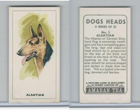 A0-0 Amaran Tea, Dogs Heads, 1965, #3 Alsatian, German Shepard
