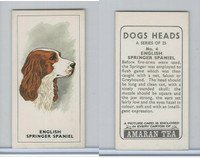 A0-0 Amaran Tea, Dogs Heads, 1965, #4 English Springer Spaniel