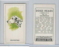 A0-0 Amaran Tea, Dogs Heads, 1965, #10 Dalmatian