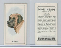 A0-0 Amaran Tea, Dogs Heads, 1965, #13 Mastiff