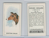 A0-0 Amaran Tea, Dogs Heads, 1965, #18 Scottish Collie