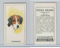A0-0 Amaran Tea, Dogs Heads, 1965, #19 Foxhound