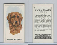 A0-0 Amaran Tea, Dogs Heads, 1965, #23 Golden Retriever