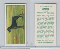 B0-0 Barbers Tea, Dogs, 1961, #21 Dobermann Pinscher