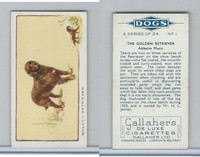 G12-80 Gallaher Tobacco, Dogs, 1934, #1 Golden Retriever