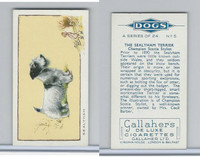 G12-80 Gallaher Tobacco, Dogs, 1934, #5 Sealyham Terrier