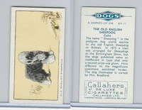 G12-80 Gallaher Tobacco, Dogs, 1934, #11 Old English Sheepdog