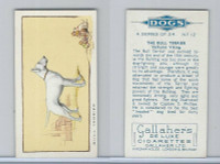 G12-80 Gallaher Tobacco, Dogs, 1934, #12 Bull Terrier