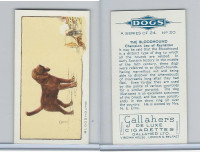 G12-80 Gallaher Tobacco, Dogs, 1934, #20 Bloodhound