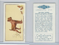 G12-80 Gallaher Tobacco, Dogs, 1934, #23 Irish Terrier