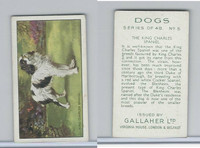 G12-81 Gallaher Tobacco, Dogs, 1936, #5 King Charles Spaniel