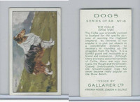 G12-81 Gallaher Tobacco, Dogs, 1936, #16 Collie
