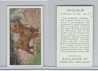 G12-81 Gallaher Tobacco, Dogs, 1936, #17 Norwich Terrier