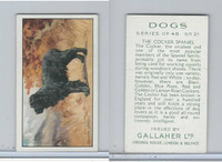 G12-81 Gallaher Tobacco, Dogs, 1936, #21 Cocker Spaniel