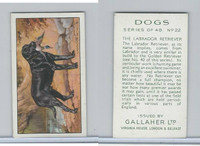 G12-81 Gallaher Tobacco, Dogs, 1936, #22 Labrador Retriever