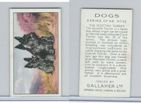 G12-81 Gallaher Tobacco, Dogs, 1936, #23 Scottish Terrier