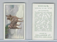 G12-81 Gallaher Tobacco, Dogs, 1936, #29 Elkhound
