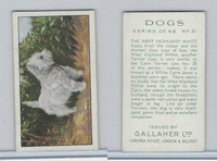 G12-81 Gallaher Tobacco, Dogs, 1936, #31 West Highland White Terrier