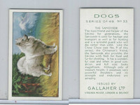 G12-81 Gallaher Tobacco, Dogs, 1936, #33 Samoyede