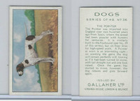G12-81 Gallaher Tobacco, Dogs, 1936, #36 Pointer