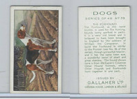 G12-81 Gallaher Tobacco, Dogs, 1936, #39 Foxhound