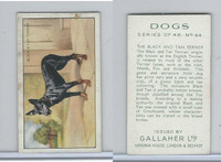 G12-81 Gallaher Tobacco, Dogs, 1936, #44 Black & Tan Terrier
