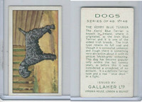 G12-81 Gallaher Tobacco, Dogs, 1936, #48 Kerry Blue Terrier