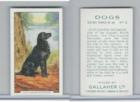 G12-81b Gallaher Tobacco, Dogs 2nd Series, 1938, #2 Flat-Coated Retriever