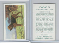 G12-81b Gallaher Tobacco, Dogs 2nd Series, 1938, #5 Bloodhound