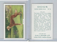 G12-81b Gallaher Tobacco, Dogs 2nd Series, 1938, #9 Saluki