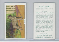 G12-81b Gallaher Tobacco, Dogs 2nd Series, 1938, #13 Boxer