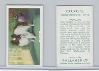 G12-81b Gallaher Tobacco, Dogs 2nd Series, 1938, #19 Papillon