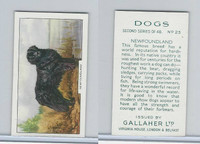 G12-81b Gallaher Tobacco, Dogs 2nd Series, 1938, #23 Newfoundland