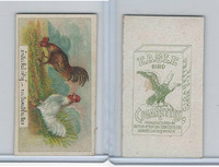 B116-151 BAT Eagle Cigarettes, Animals & Birds, 1912, #1 Chickens