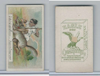 B116-151 BAT Eagle Cigarettes, Animals & Birds, 1912, #19 Wolf