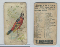 E34 Keystone Confections, Bird Cards, 1910, Orchard Oriole