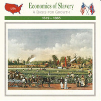 1995 Atlas, Civil War Cards, #30.19 Economics Slavery, Mississippi Plantation