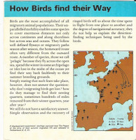 1975 Editions Rencontre, Animals Card, #Booklet - How Birds Find Their Way