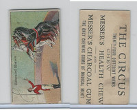 E44 Messer's Charcoal Gum, The Circus, 1910, Educated Horses