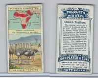 P72-44 Player, Products Of The World, 1908, #21 Ostrich Feathers