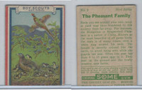 R26 Goudey, Boy Scouts, 1933, #8 The Pheasant Family (Trimmed)