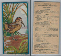 V6 Cowan, Educational Pictures Birds, 1924, Woodcock