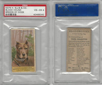 N375 H. Ellis, Breeds of Dogs, 1890, Blood Hound, PSA 4 VGEX