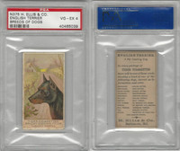 N375 H. Ellis, Breeds of Dogs, 1890, English Terrier, PSA 4 VGEX