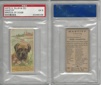 N375 H. Ellis, Breeds of Dogs, 1890, Mastiff, PSA 5 EX