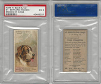 N375 H. Ellis, Breeds of Dogs, 1890, St. Bernard (Rough), PSA 5 EX