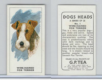 G0-0 G.P. Tea, Dogs Heads, 1963, #1 Wire-Haired Fox Terrier