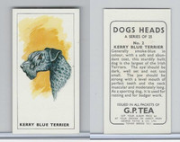 G0-0 G.P. Tea, Dogs Heads, 1963, #2 Kerry Blue Terrier